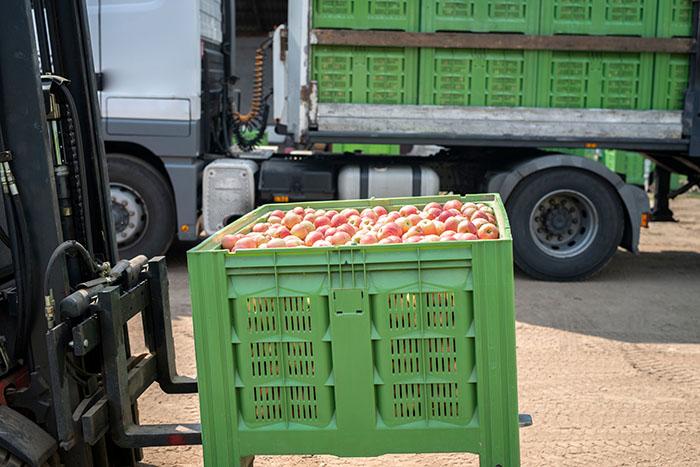 Stärkere Importkontrolle für Lebens- und Futtermittel