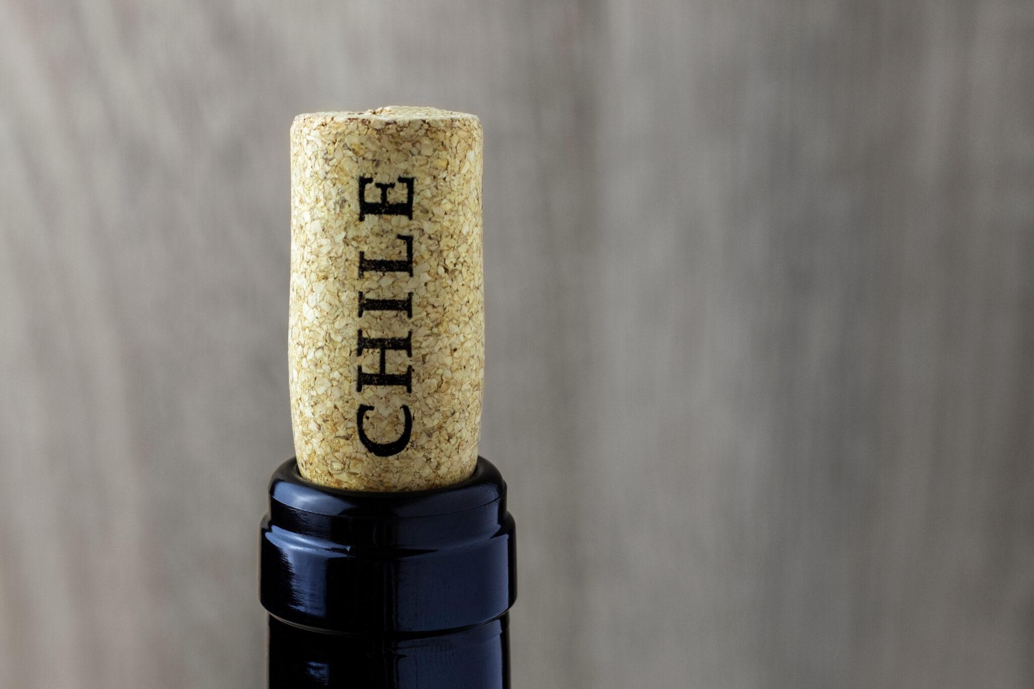 Wein importieren - 8 Dinge die Sie wissen müssen